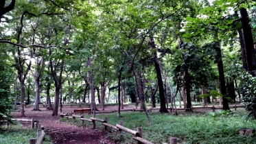 井の頭公園02-04