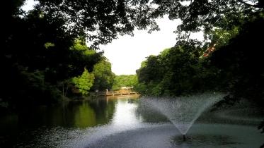 井の頭公園02-07