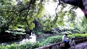井の頭公園02-09