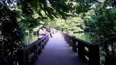 井の頭公園02-12