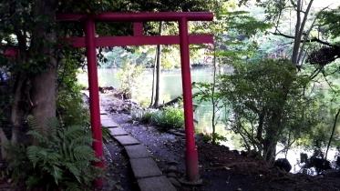 井の頭公園02-14