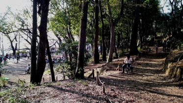 井の頭公園02-22