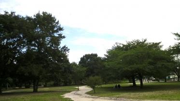 井の頭公園02-25