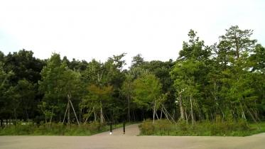 井の頭公園02-29