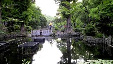 井の頭公園02-30