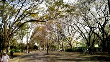 井の頭公園03-05