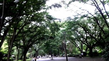 井の頭公園03-06