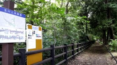 井の頭公園03-08