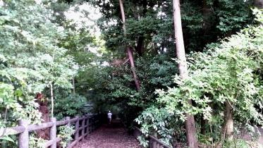 井の頭公園03-09
