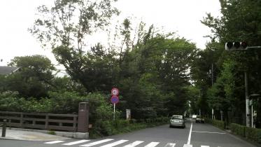 井の頭公園03-11