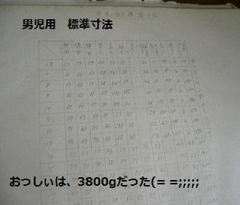 P1260878.jpg