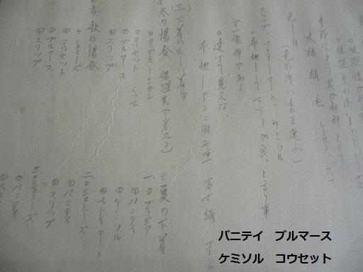 P1260880.jpg