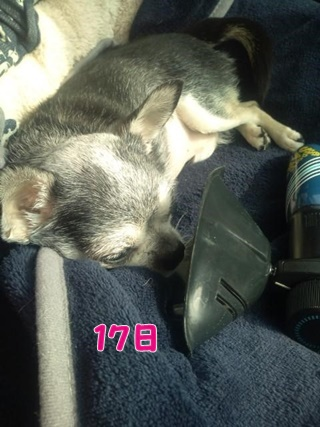 140718 (4)