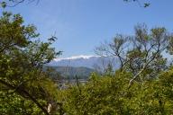 本丸跡から見た中央アルプス (駒ヶ岳)