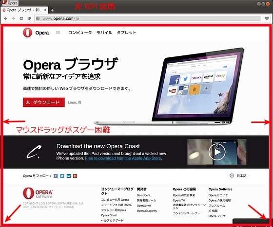 Opera_Developer24.jpg