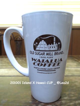 2010年1月 ISLAND X HAWAII(アイランド X ハワイ)