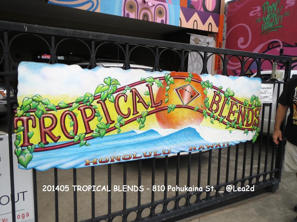 2014年5月_TROPICAL BLENDS(トロピカルブレンズ)-SUP(スタンドアップパドル)