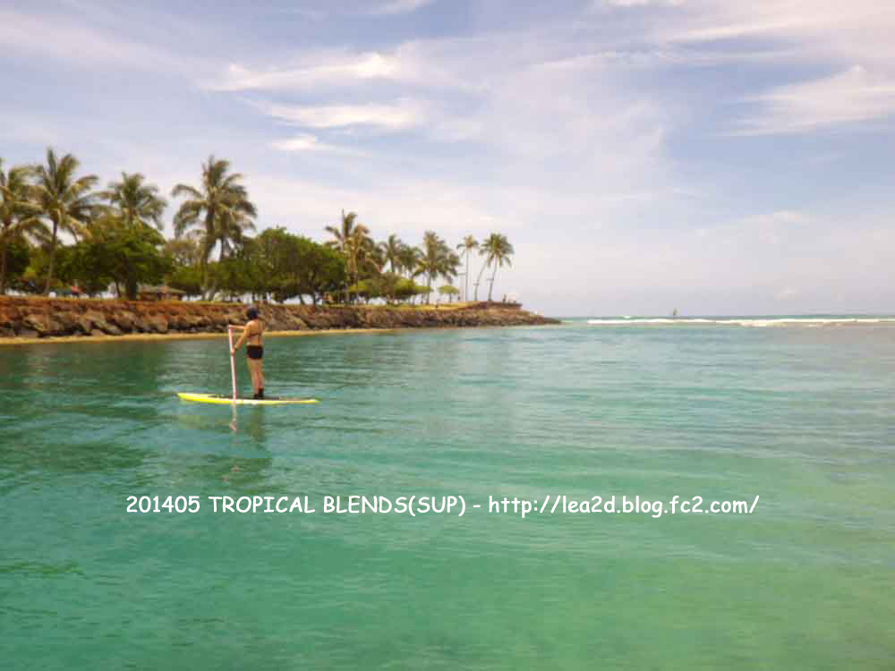 "201405 TROPICAL BLENDS(Papa Iki 8'0"" & Papa Iki 8'0"") SUP - Ala MoanaBeachPark"
