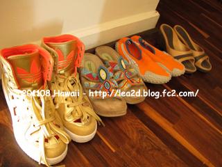 【2011年8月 ハワイに持参した靴】 海ぐつって持って行く時に限って出番がなかったりする。