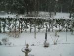 snow2014-04.jpg