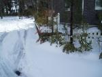 snow2014-09.jpg