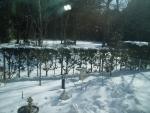snow2014-10.jpg