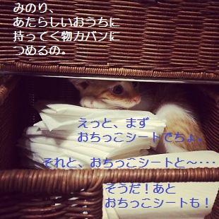t_みのり3