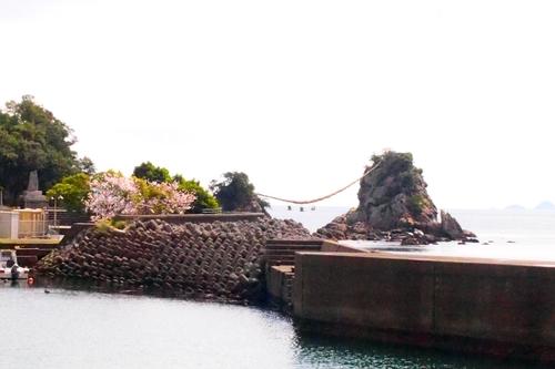 260330 暁嵐の滝4