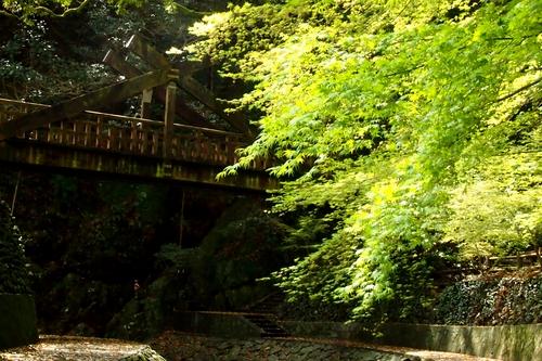 260330 暁嵐の滝27
