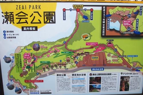 260330 瀬会公園1