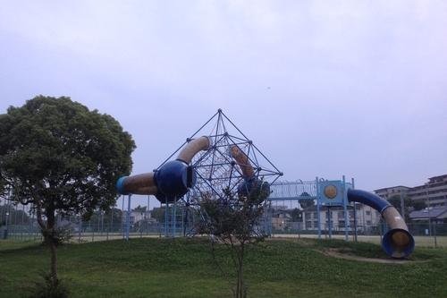 260616 公園1