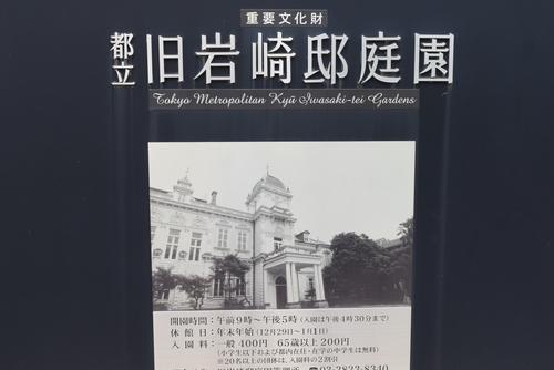 260629 旧岩崎邸庭園1