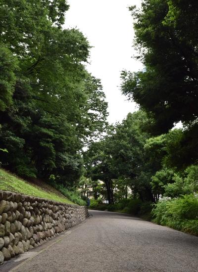 260629 旧岩崎邸庭園2