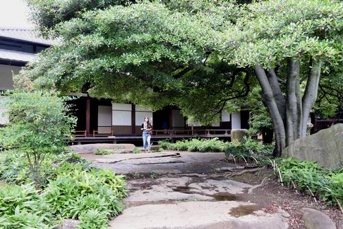 260629 旧岩崎邸庭園14