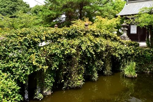 260711 櫛田神社10
