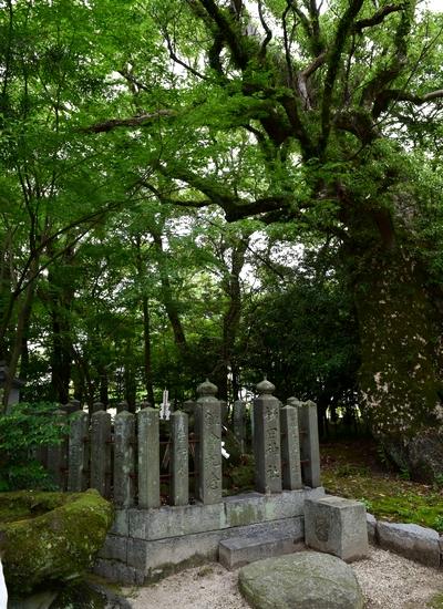 260711 櫛田神社25