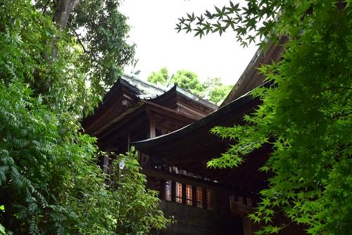 260711 須賀神社19