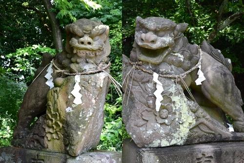 260711 須賀神社21