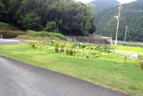 260730 田川3