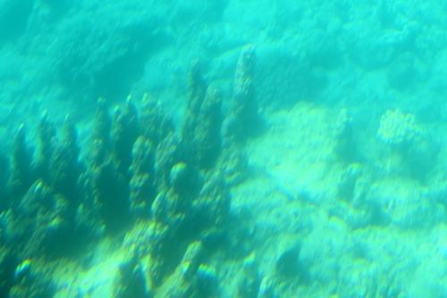260721 半潜水船17