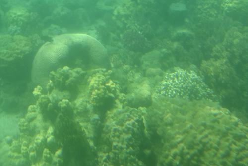 260721 半潜水船19