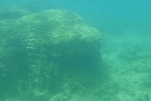 260721 半潜水船23