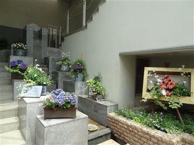 春日井市都市緑化植物園10