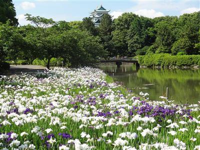 名城公園5