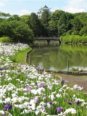 名城公園10