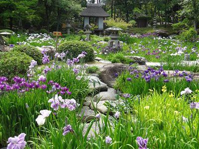 諸戸氏庭園4