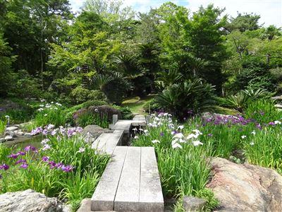 諸戸氏庭園5