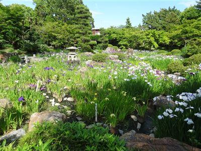 諸戸氏庭園7