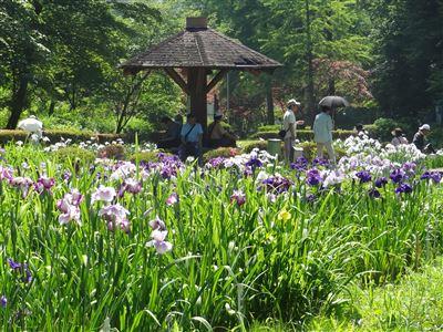 岐阜県百年公園5