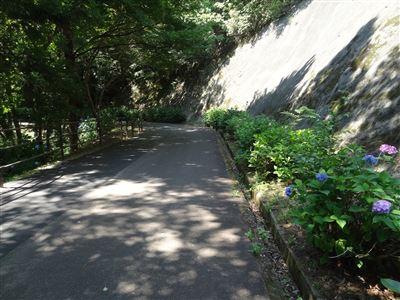 岐阜県百年公園2